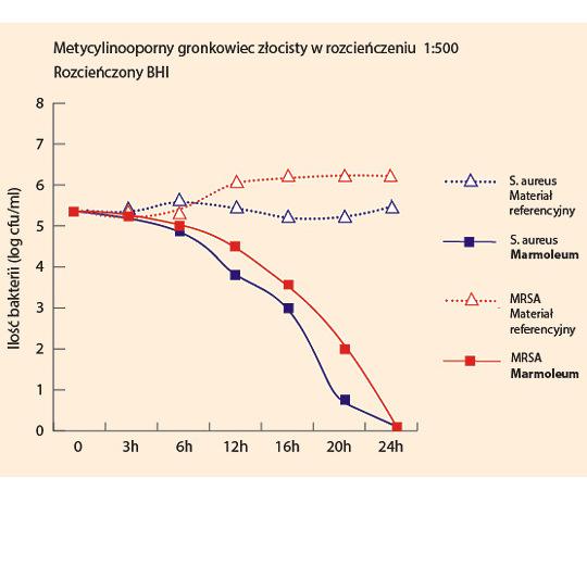 Rozwój bakterii na powierzchni Marmoleum w warunkach suchych