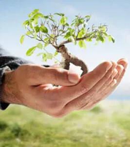 Udd. i bæredygtighed