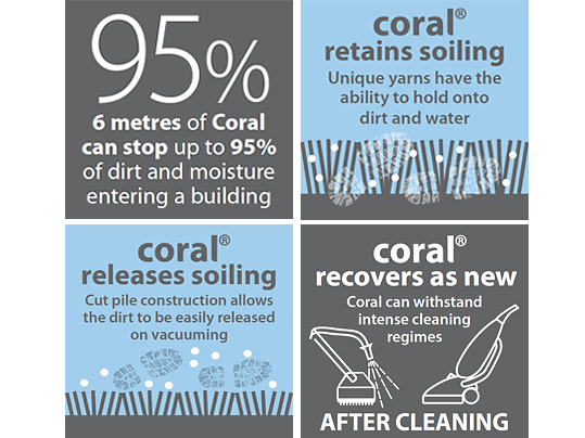 Benefits of Coral