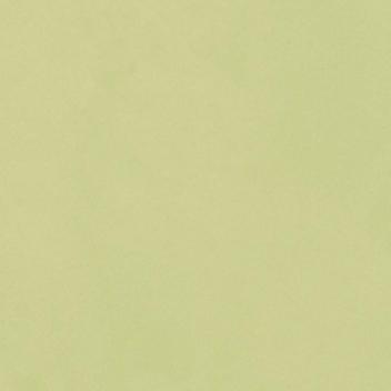 Onyx FR 23543 Green