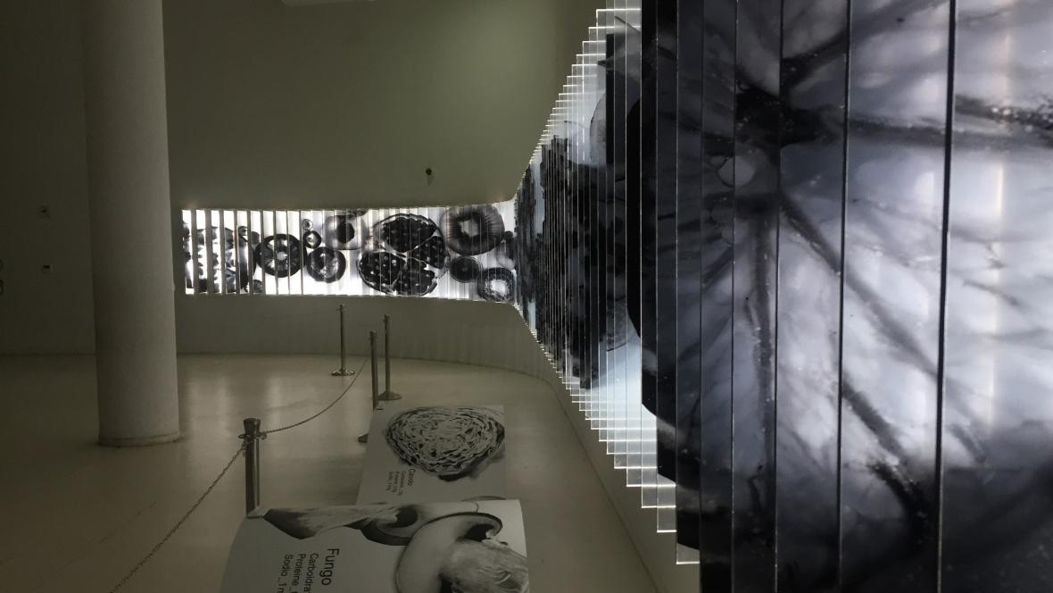 Korea Pavilion Milan EXPO 2015