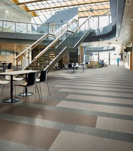 Marmoleum Modular Linoleum Flooring - Commercial Office