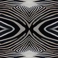 Flotex Vision image
