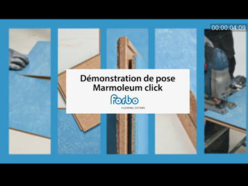 marmoleum click video