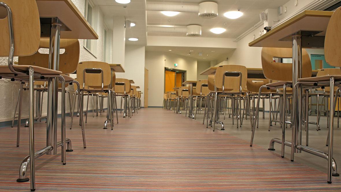 Ainiovaaran Koulo School