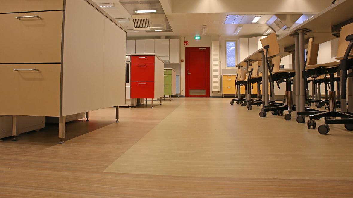 Ainiovaara School
