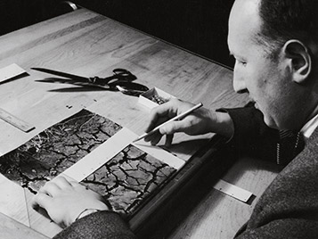 Tibor Reich portrait
