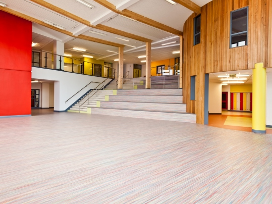 Temple Carrig School - marmoleum
