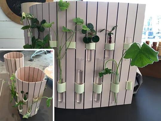 Sofia Nilsson-urban gardening TRNDS