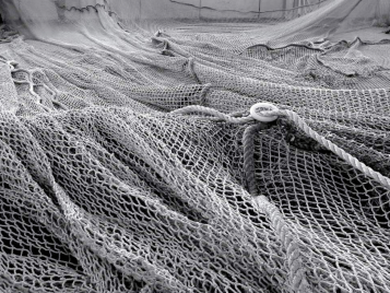 Abandoned fishing nets are one of the unlikely ingredients of Econyl yarn