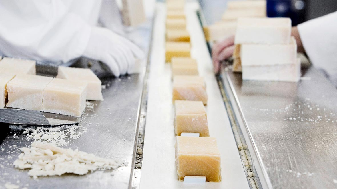 Food: Production of cheese with Forbo Siegling Transilon conveyor belt.