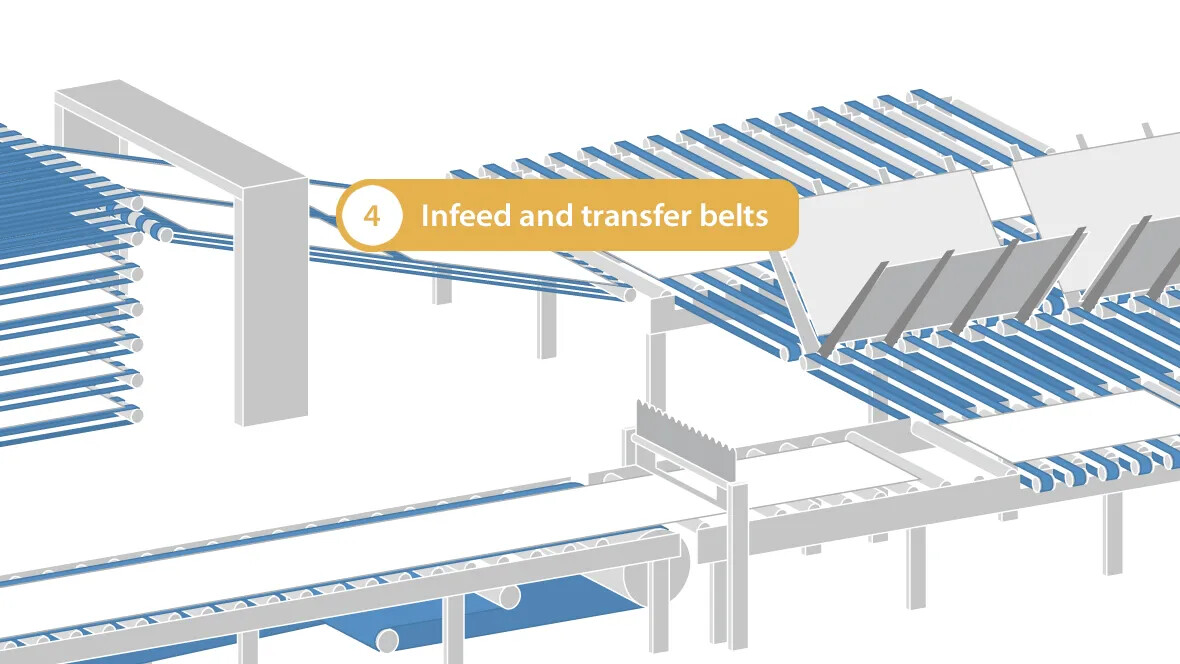 Infeed and transfer belts