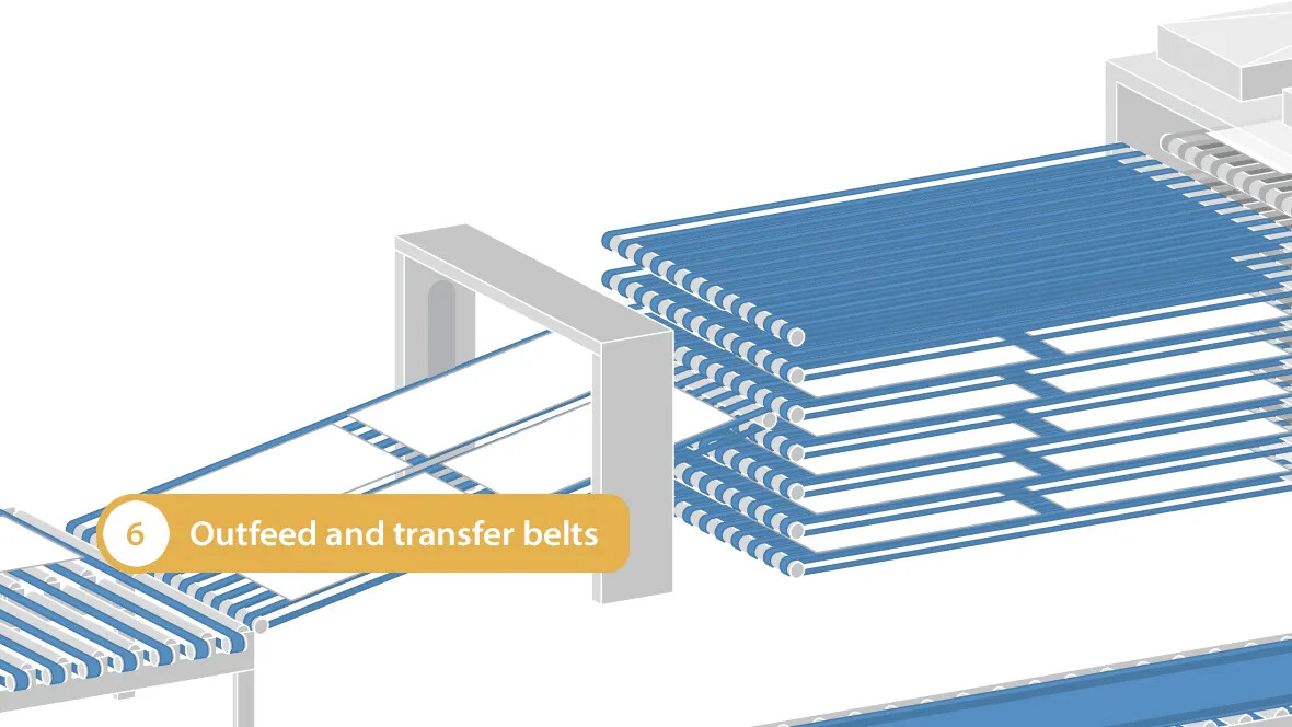 Outfeed and transfer belts