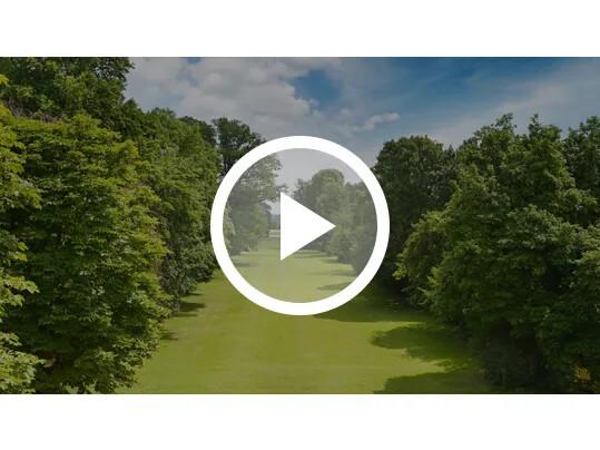 amp miser video