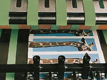 单张纸胶印机