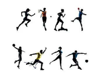 Marmoleum Sport Sportarten