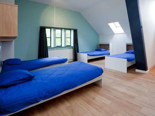Revêtement de sol PVC habitat lames et dalles parquet   Forbo Flooring Systems