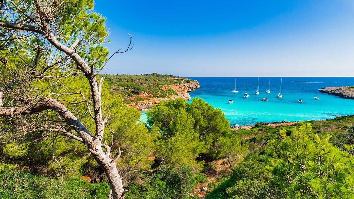 Lebensräume Mallorca
