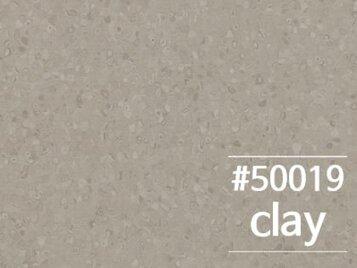 50019