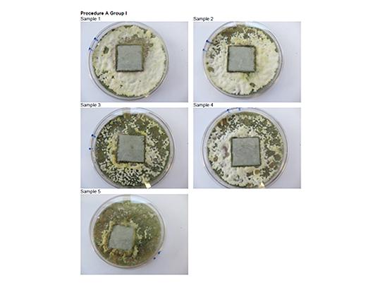 Sphera Bacteria Test