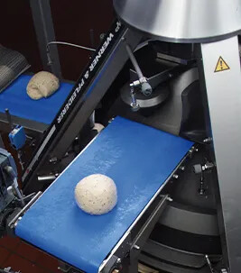 Dough processing on blue conveyor belt in industrial bakery