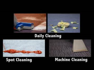 Flotex Cleaning