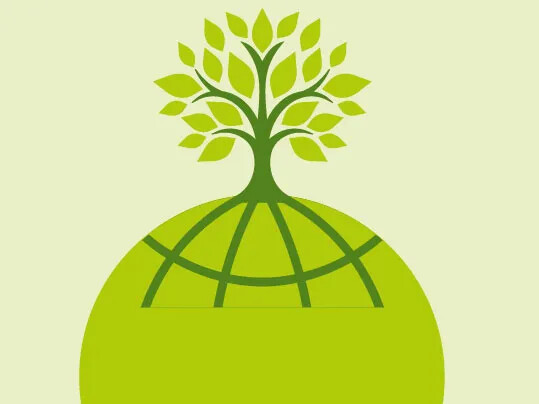 Forbo Marmoleum - renewable raw materials bind CO2