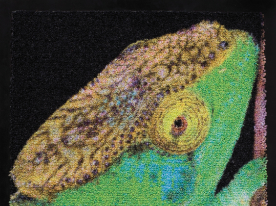 Coral logo mat printed
