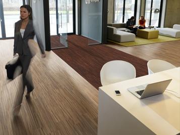 Coral för kontorsmiljö
