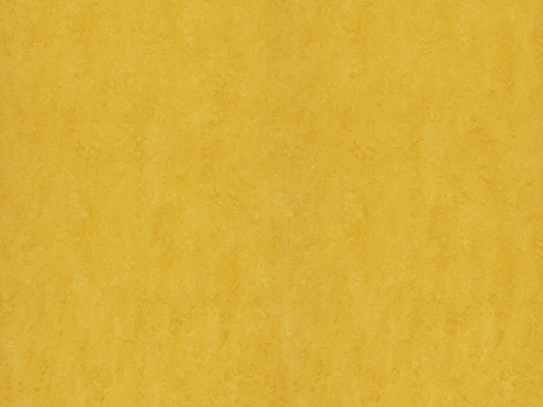 Marmoleum Modular Colour Forbo Flooring Systems