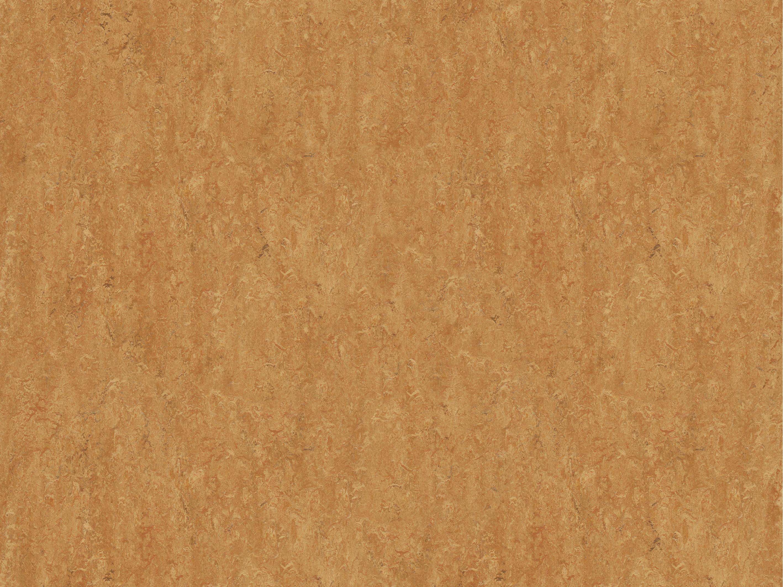 marmoleum real forbo flooring systems australia. Black Bedroom Furniture Sets. Home Design Ideas