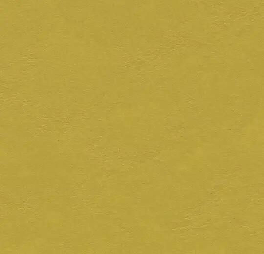 3362 yellow moss