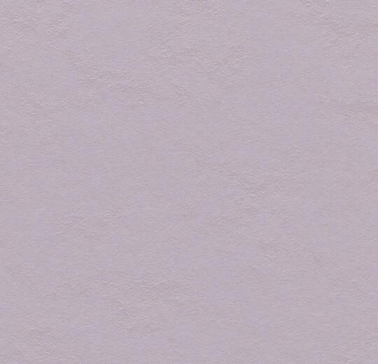 3363 lilac
