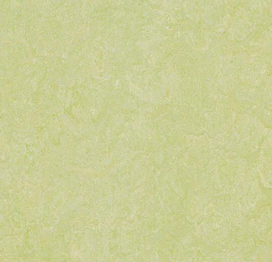 3881 green wellness