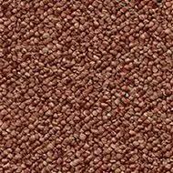 1469 copper