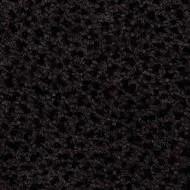 NF92149 dark woodland