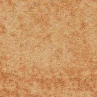 290008 calgary saffron