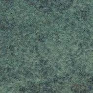 290009 calgary moss
