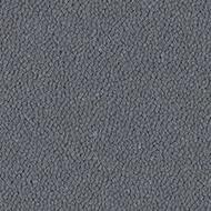 9835 cannon grey