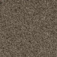 13852 soil