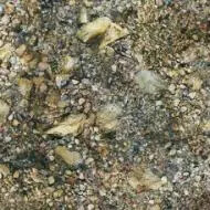 000368 riverbed