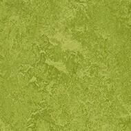 3247 green