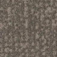 246011 pebble