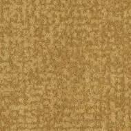 t546013 Metro amber
