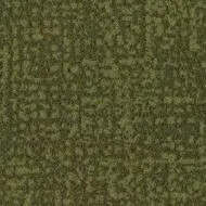 t546021 Metro moss