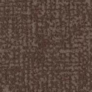 s246015 cocoa