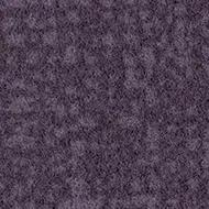246016 grape
