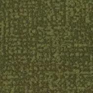 s246021 Metro moss
