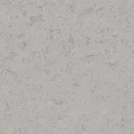 43C2211 gris clair