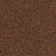 966 sahara